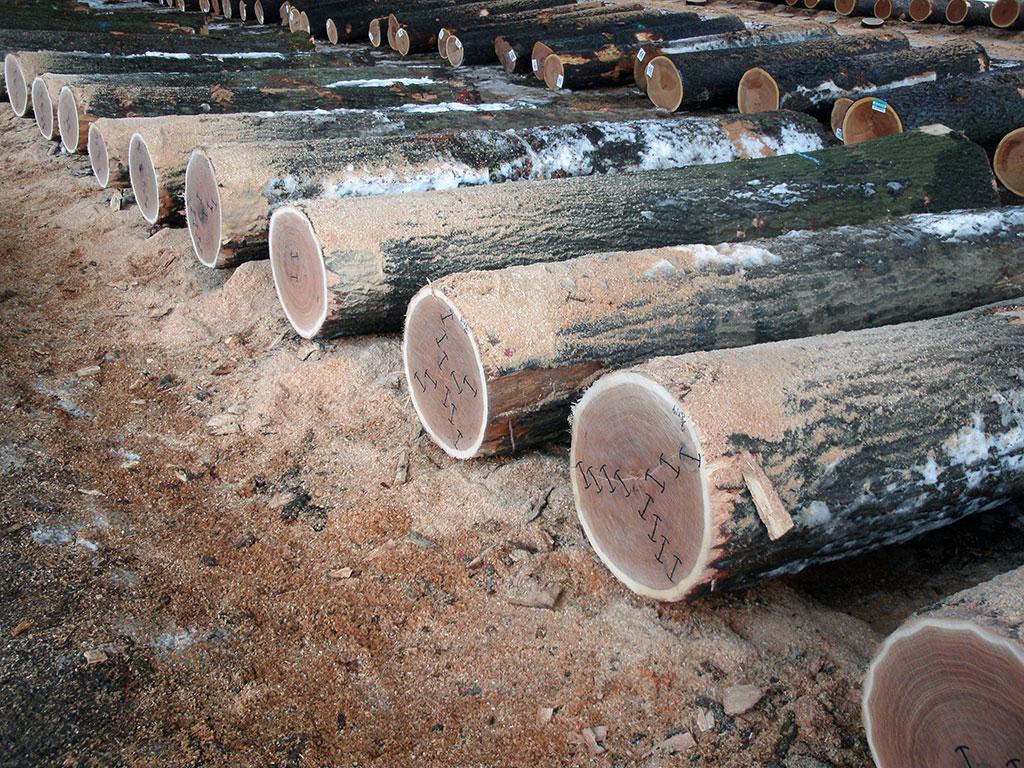 Log Sales Appalachian Hardwoods Veneer Logs